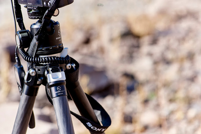 Sunwayfoto T2C42C Tripode CF con equipo de cámara