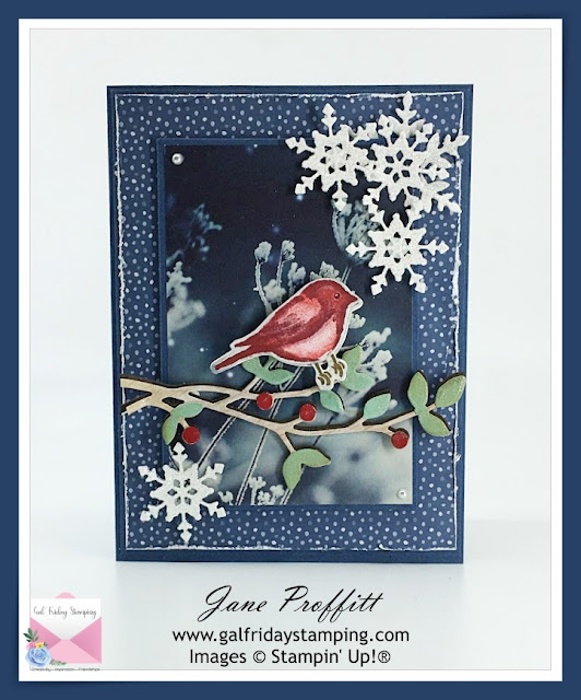 Christmas card created with the Birds & Branches stamp set from Stampin' Up!