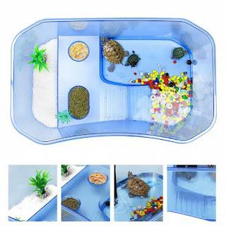 jual-akuarium-kura-kura.jpg
