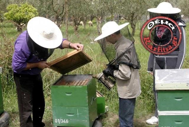 Οι άνεργοι της πόλης γίνονται μελισσοκόμοι!