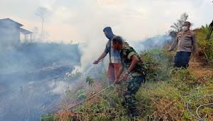 BPBD Sebut Lahan 7 Perusahaan di Tebo Ini Terbakar