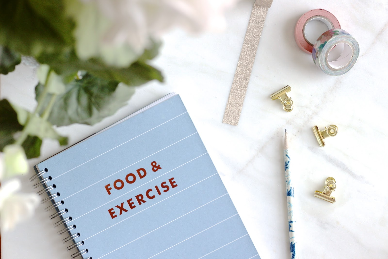 Why You Should Invest In A Health And Fitness Journal.