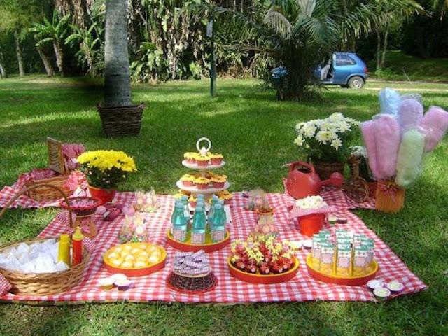 Festa de aniversário infantil no parque fazendo piquenique