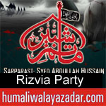 https://www.humaliwalayazadar.com/2014/10/rizvia-party-nohay-1993-to-2015.html
