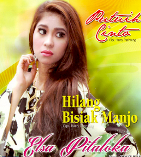 Download Lagu Mp3 Minang Elsa Pitaloka Full Album Paling Populer Lengkap