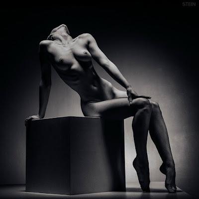 desnudo-arte-fotos-artisticas-vadim-stein