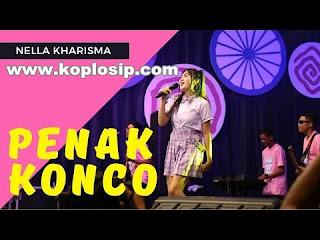 Penak Konco - Nella Kharisma - Radio Hits
