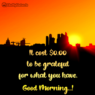 Best Good Morning Quote