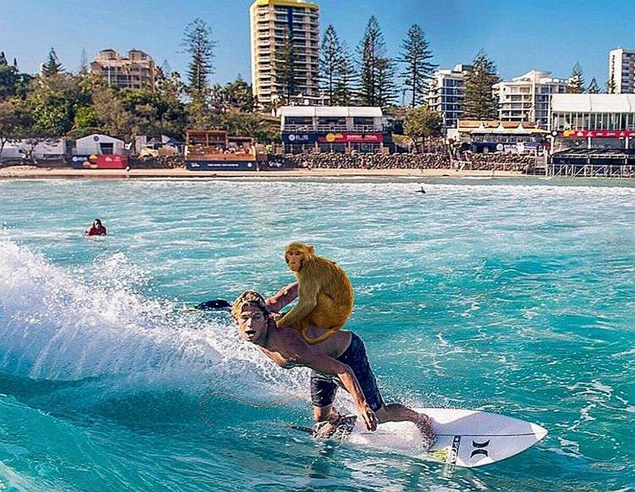 instagram de la semana surf