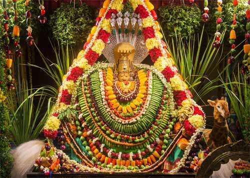 Importance of Shakambari Devi Purnima