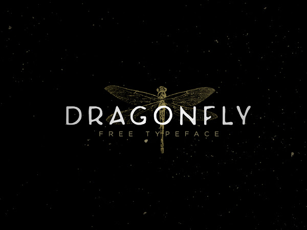 Dragonfly Comic Sans Font Free Download
