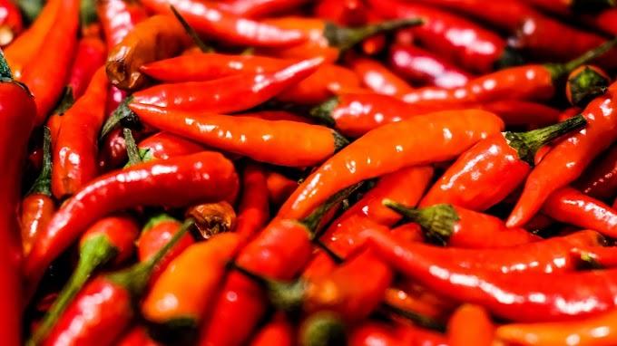 Papel de Parede Pimenta Vermelha