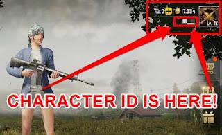 pubg character id