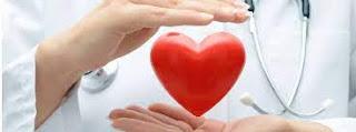 Fato ou fake? Especialista do PROADI-SUS esclarece mitos e verdades sobre doação e transplante de órgãos