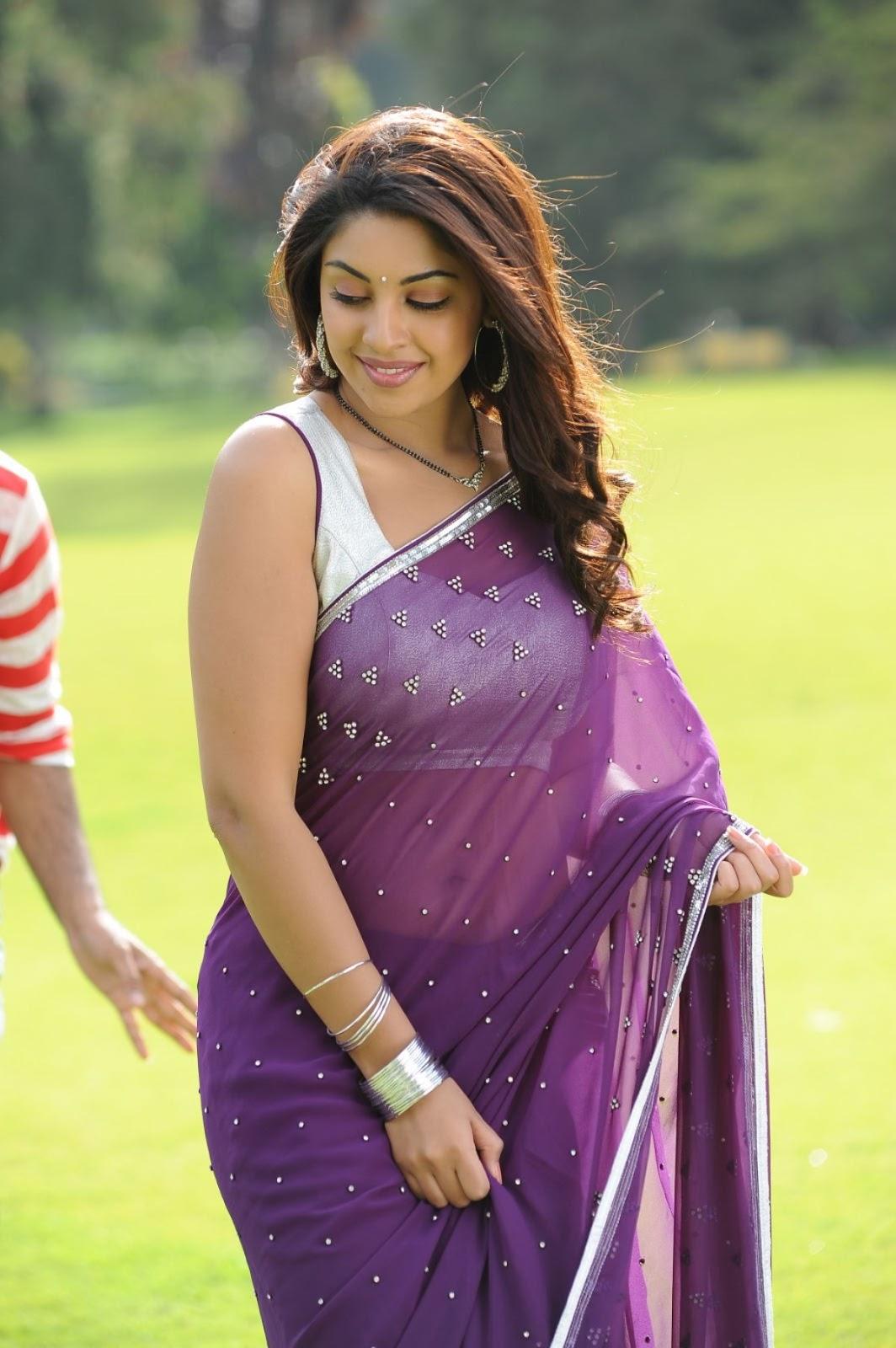 South Indian Actress Hot Saree Pictures 87 Best Hot Saree -8825