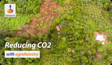 Rabobank – Réduction des émissions de CO2