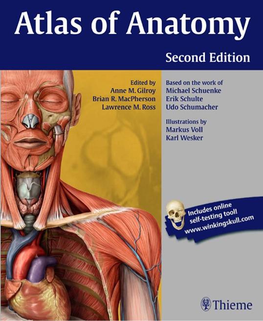 Thieme Atlas Giải phẫu học người 2e