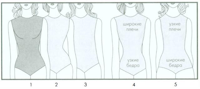 Соотношение Плечи Талия Бедра