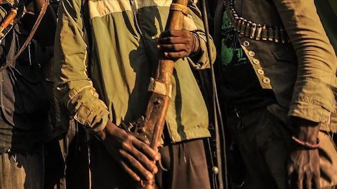 Taraba: Gunmen Kill Two, Abduct Two Chinese expatriates in Wukari