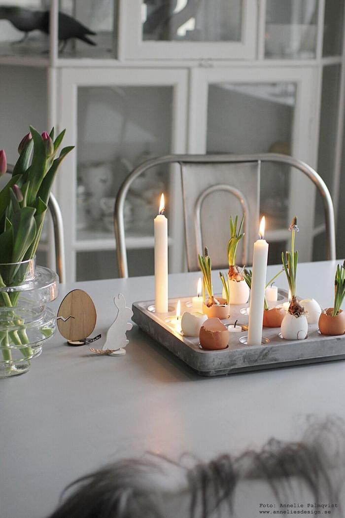 annelies design, hare, ägg, påsk, påsken, påskpynt, Oohh, stumpastake, äggskal, vårlökar, inredning, vako, tulpaner, blommor,