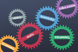 How Students Can Improve Their Skills Through a Mathematics Project