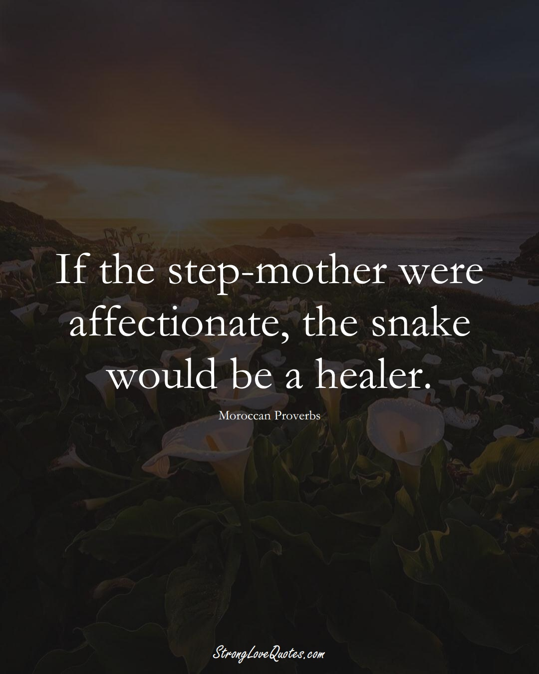 If the step-mother were affectionate, the snake would be a healer. (Moroccan Sayings);  #AfricanSayings