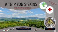 A Trip for Siskins - pdf