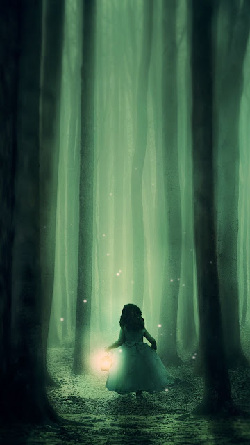 Wallpaper Fantasy, Forest, Child, Alone, Fog, Lantern