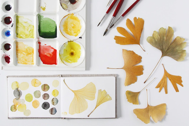 sketchbook, watercolor, gingko leaves, nature, botanical sketchbook, watercolor palette, color swatches, Anne Butera, My Giant Strawberry