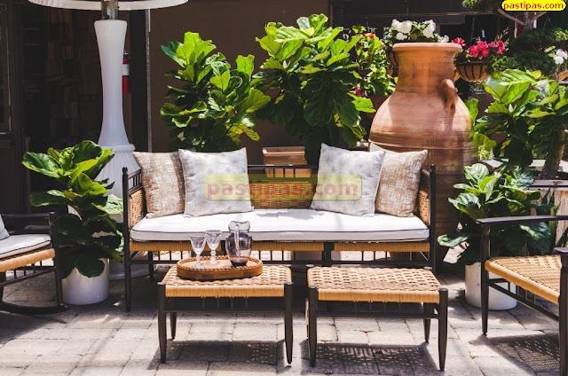 Taman Tropis Rumah Minimalis Indoor