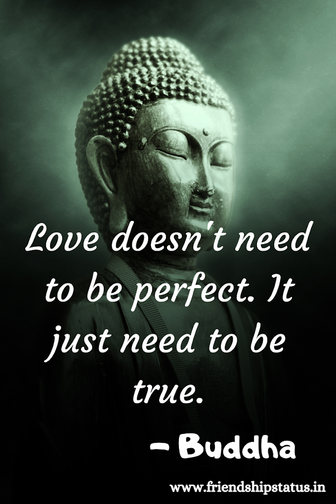 50 Best Buddha Quotes on Love