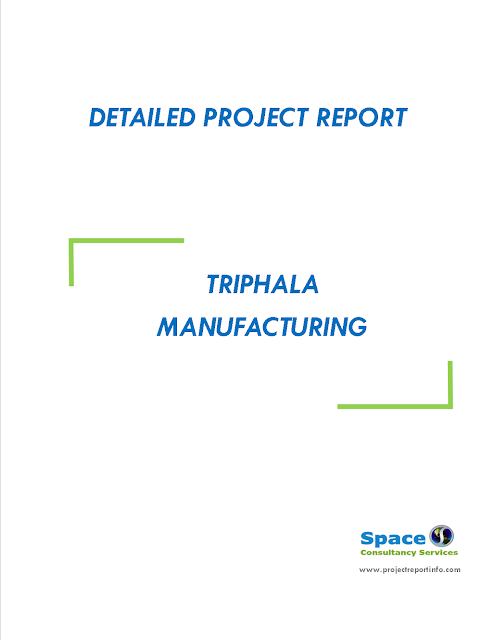 Project Report on Triphala Manufacturing