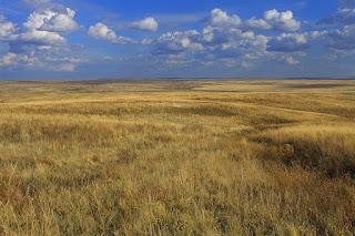 il paesaggio della steppa, pagina di geografia per la scuola