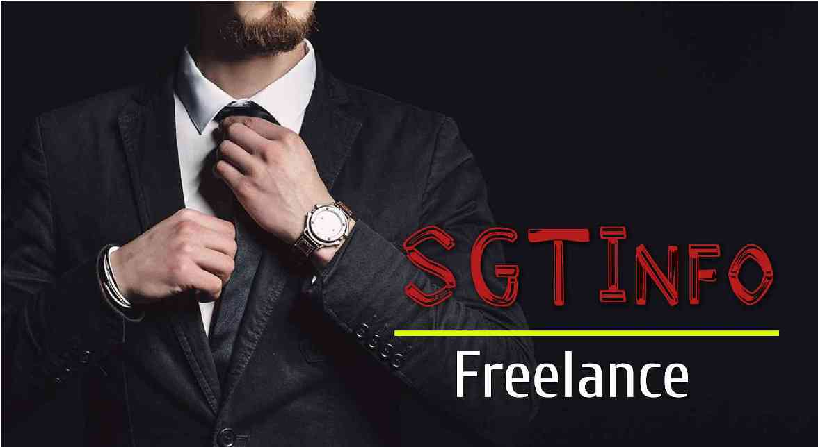 What do you need to be a Freelance professional?