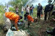 Penemuan Mayat Pria Tanpa Identitas di Perkebunan Kelapa Sawit PT. MKS Noyan
