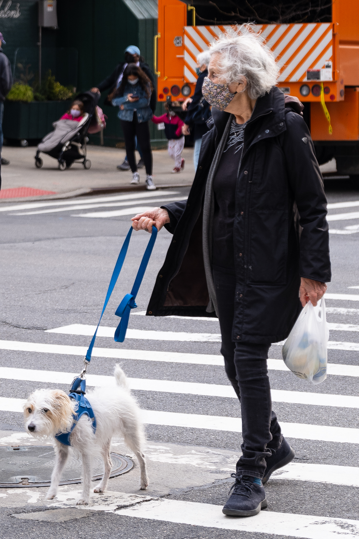 A detailed photo of a lady crossing the street with a dog on a leash