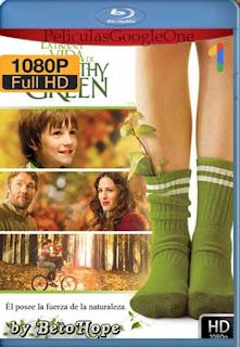 La Extraña Vida De Timothy Green [2012] [1080p BRrip] [Latino-Inglés] [GoogleDrive] RafagaHD