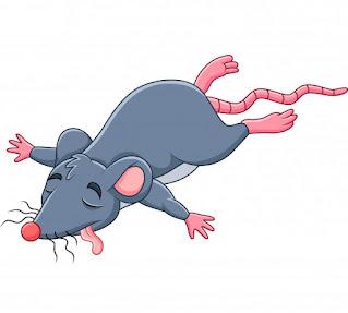 Cuento del ratón y la trampa