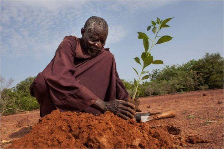 Menjaga Bumi | Yacouba Sawadogo - Menghijaukan Gurun Gersang