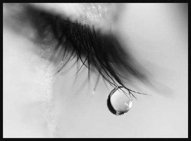 Hãy khóc khi còn có thể!