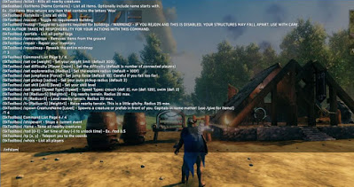 How to, Get Unlimited Health, Infinite Stamina, Valheim, Cheat Command List, SK Toolbox