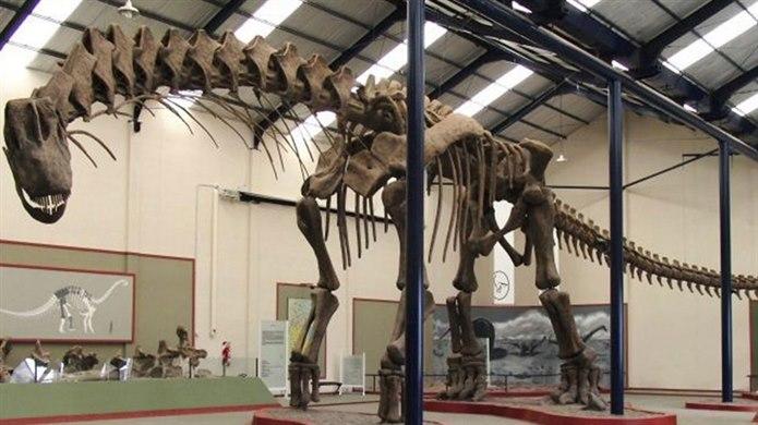 Dinozor yumurtlayarak çoğalan hayvanlar