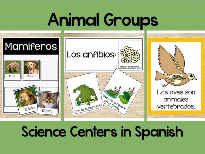 Awesome Hands-on Science Centers in Spanish That Your Students Will Love