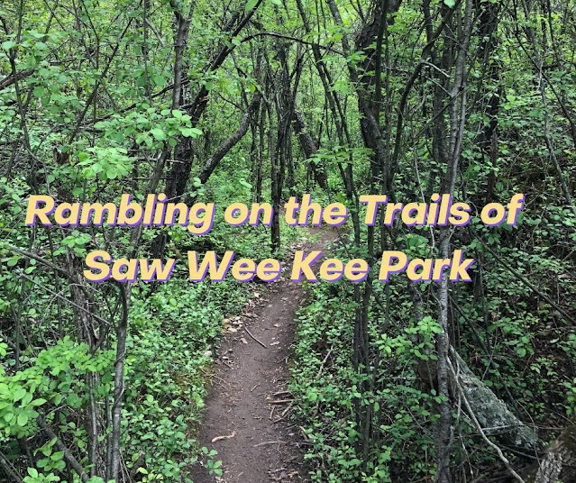 Hiking the Rolling Trails and Spying Wetlands Through the Trees at Saw Wee Kee Park in Yorkville, Illinois