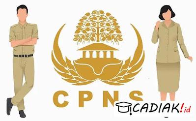 Siapkan Beberapa Poin Penting Ini Agar Bisa Ikut Seleksi CPNS 2021