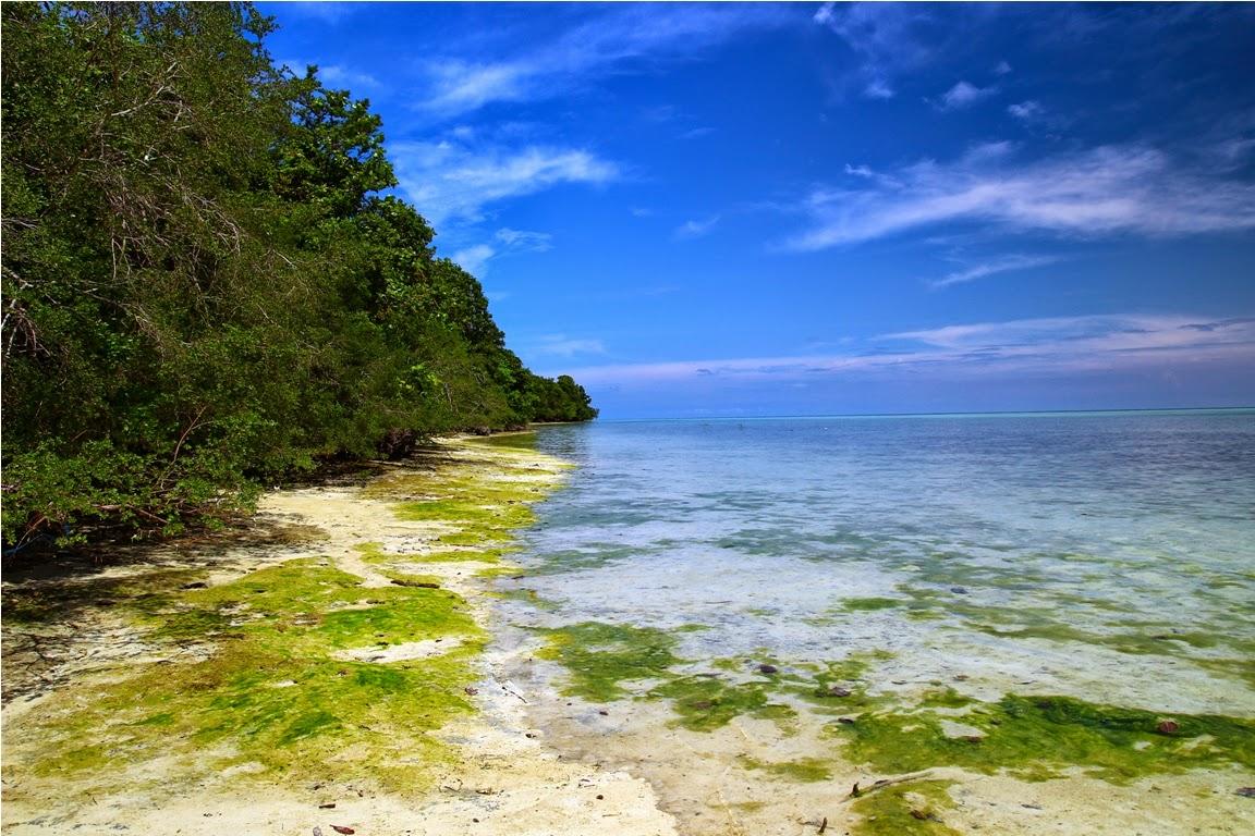 Jalan tepian pantai ini saat air pasang akan tertutup air sedalam paha orang dewasa