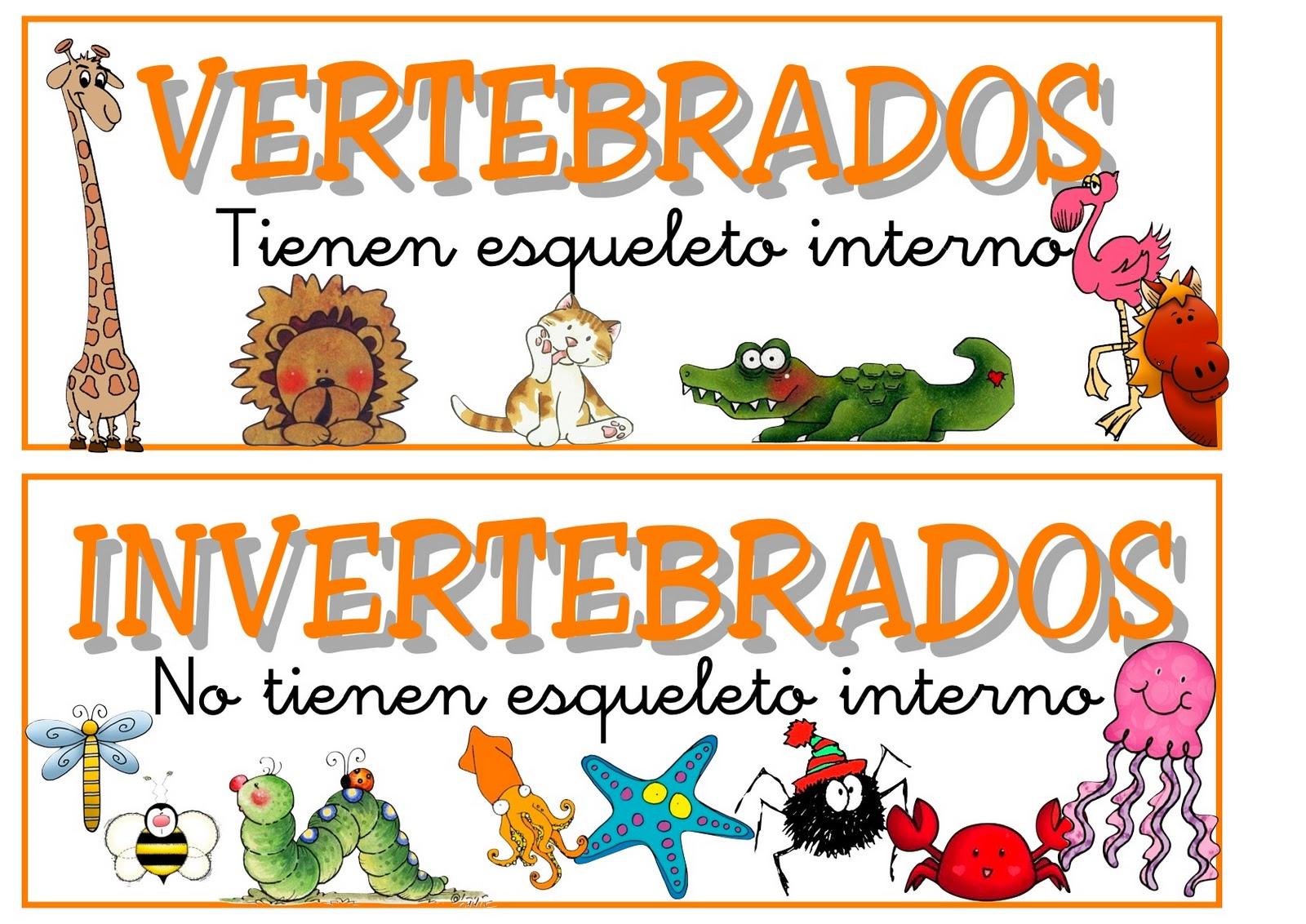 Dibujos Para Colorear De Animales Invertebrados Y Vertebrados: Animales Domesticos: Los Animales Vertebrados E Invertebrados