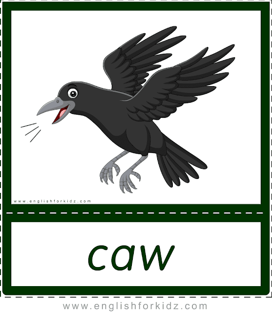 Animal sounds flashcards - caw - crow -- printable ESL resources