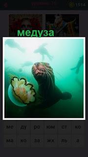 655 слов в воде рядом с рыбой плавает медуза 10 уровень