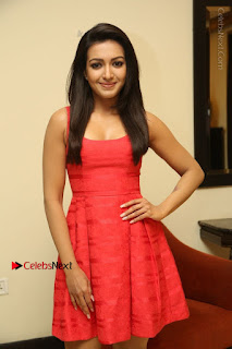 Actress Catherine Tresa Latest Pos in Red Short Dress at Intex Air Conditioners Launch  0024.jpg
